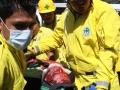heridos18112011-3